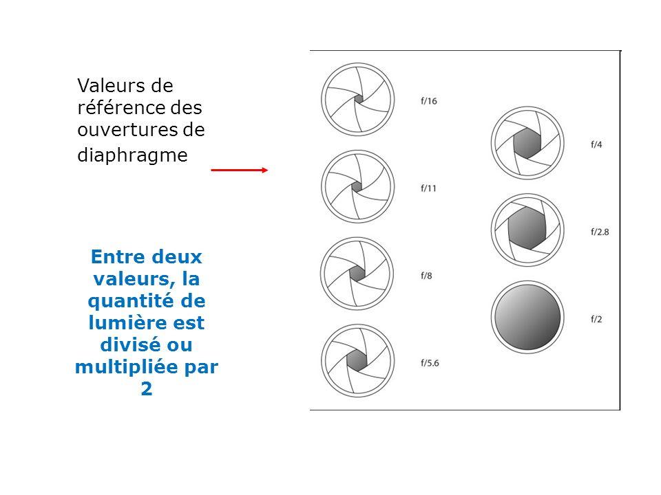 Valeurs de référence des ouvertures de diaphragme Entre deux valeurs, la quantité de lumière est divisé ou multipliée par 2