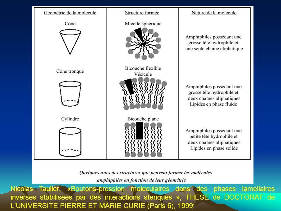 Nicolas Taulier, «Boutons-pression moleculaires dans des phases lamellaires inverses stabilisees par des interactions steriques »; THESE de DOCTORAT d