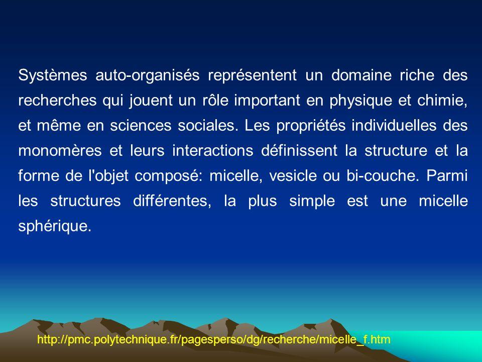 Systèmes auto-organisés représentent un domaine riche des recherches qui jouent un rôle important en physique et chimie, et même en sciences sociales.