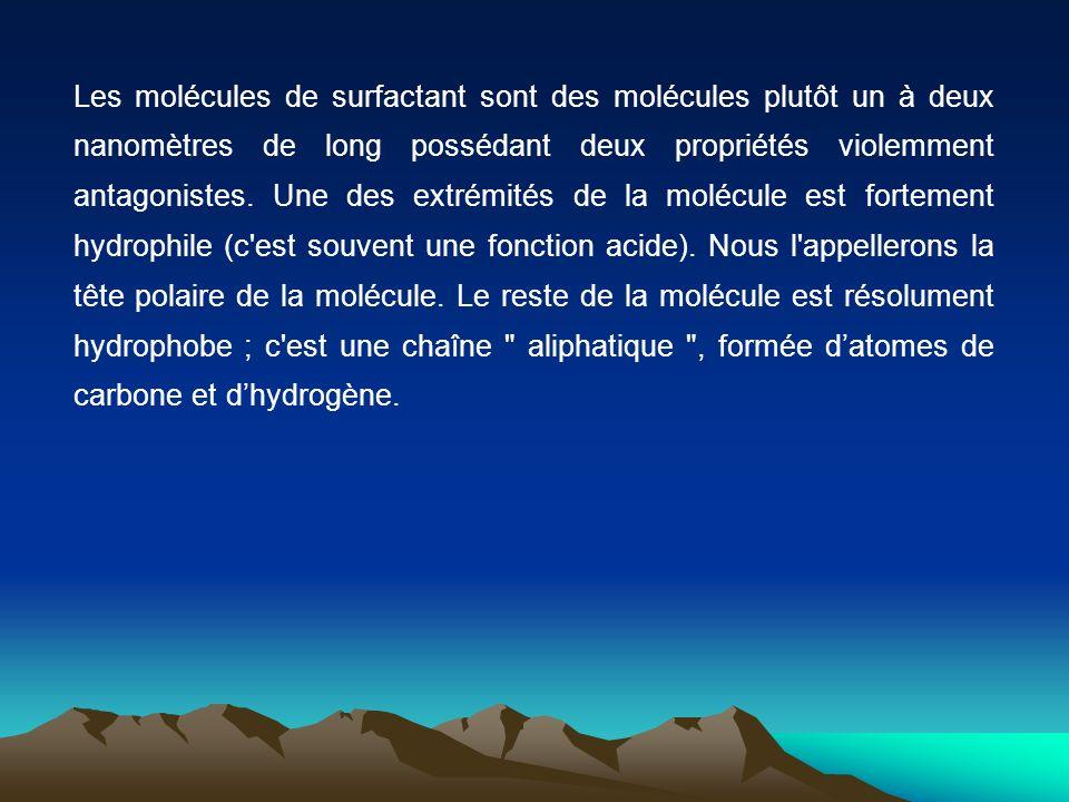 Les molécules de surfactant sont des molécules plutôt un à deux nanomètres de long possédant deux propriétés violemment antagonistes. Une des extrémit