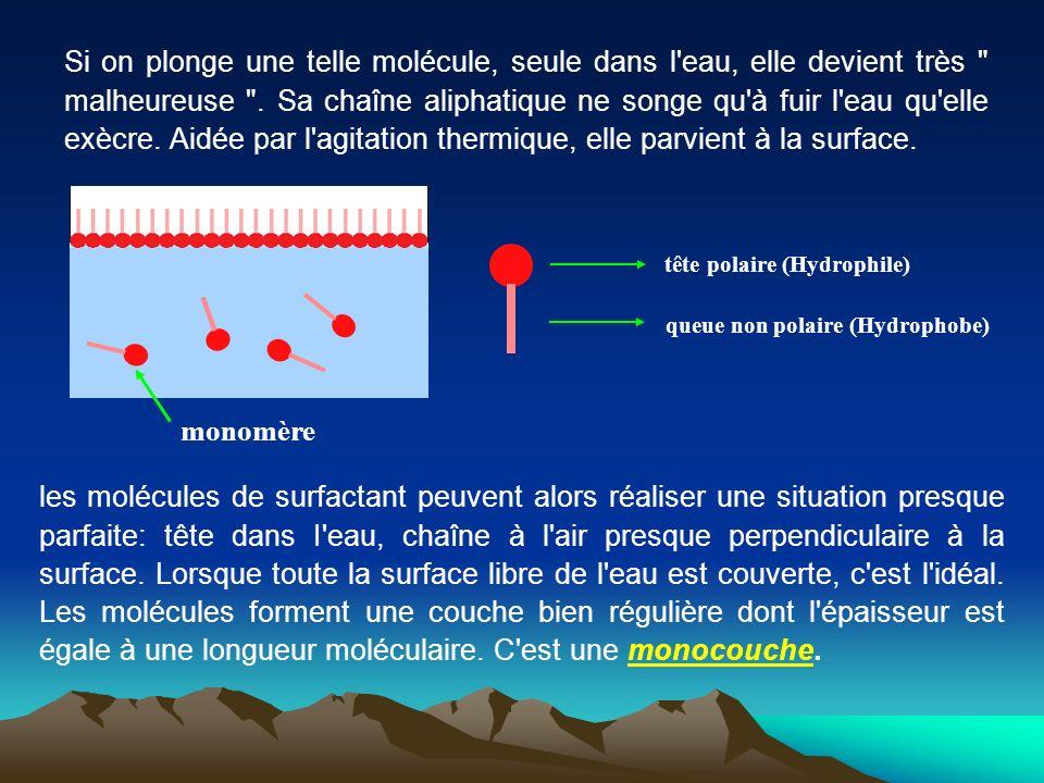 Si on plonge une telle molécule, seule dans l'eau, elle devient très