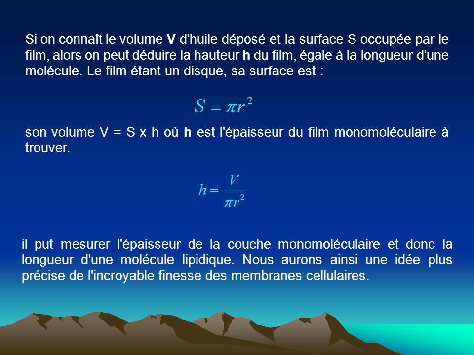 Si on connaît le volume V d'huile déposé et la surface S occupée par le film, alors on peut déduire la hauteur h du film, égale à la longueur d'une mo