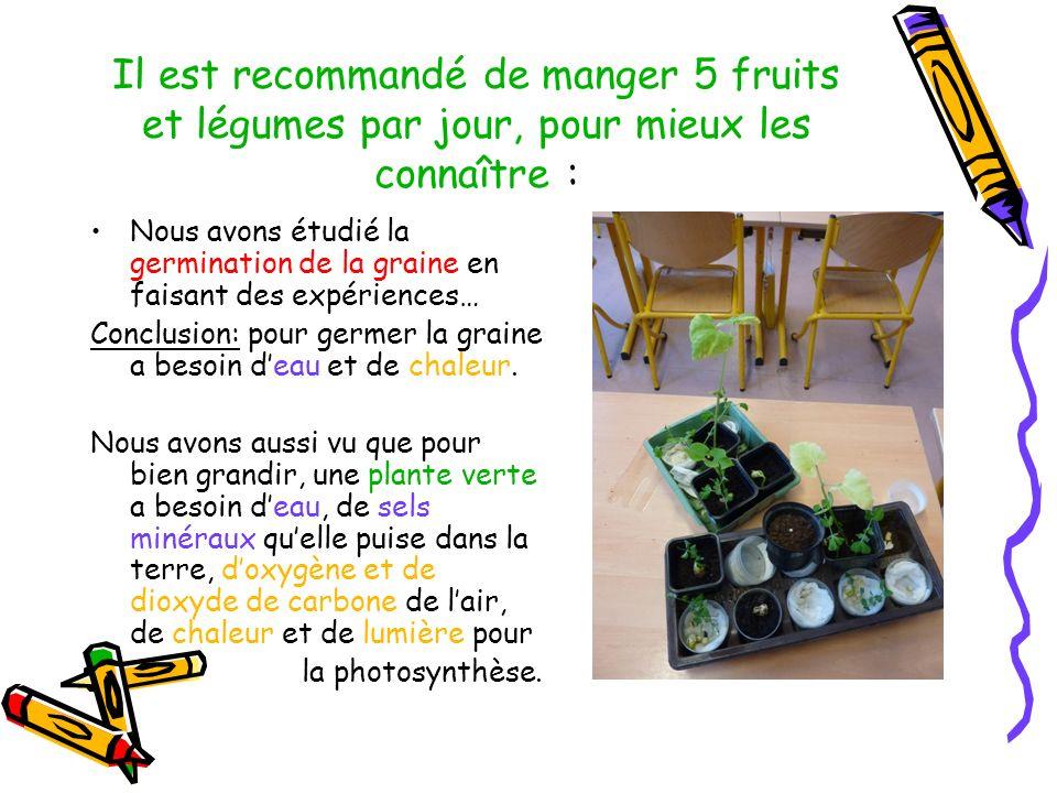 Il est recommandé de manger 5 fruits et légumes par jour, pour mieux les connaître : Nous avons étudié la germination de la graine en faisant des expé