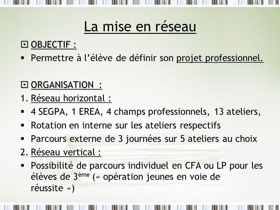 La mise en réseau OBJECTIF : OBJECTIF : Permettre à lélève de définir son projet professionnel. ORGANISATION : ORGANISATION : 1.Réseau horizontal : 4