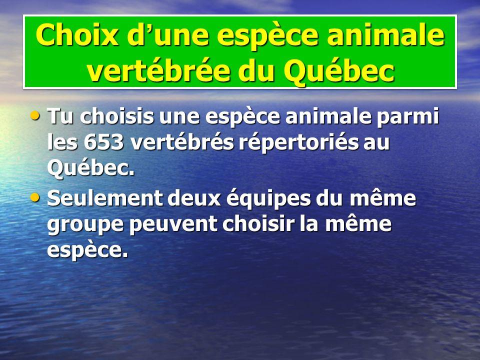 Choix dune espèce animale vertébrée du Québec Tu choisis une espèce animale parmi les 653 vertébrés répertoriés au Québec. Tu choisis une espèce anima