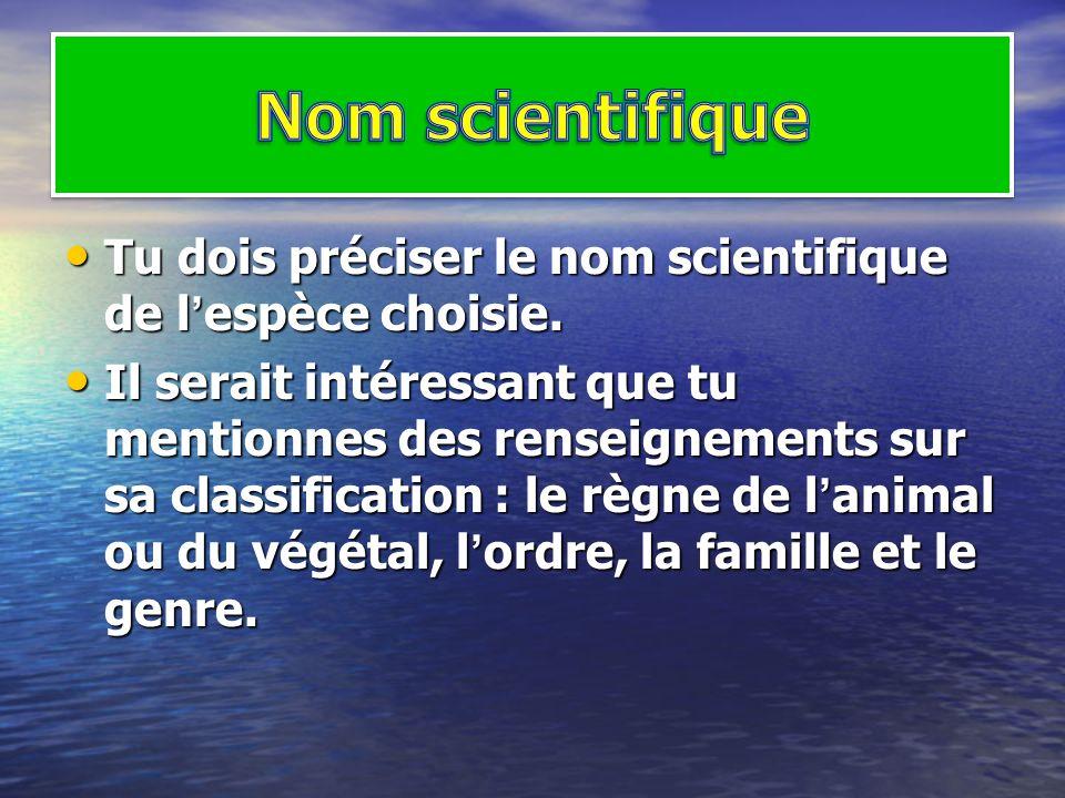 Tu dois préciser le nom scientifique de lespèce choisie. Tu dois préciser le nom scientifique de lespèce choisie. Il serait intéressant que tu mention