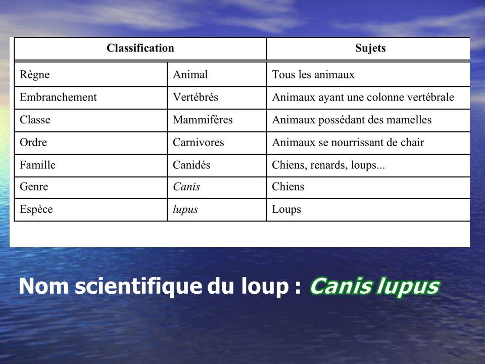 Des relations écologiques entre ton animal et dautres animaux (prédation, parasitisme, compétition, etc).