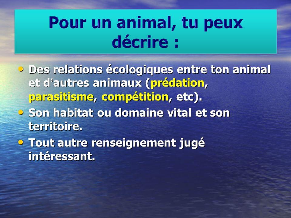 Des relations écologiques entre ton animal et dautres animaux (prédation, parasitisme, compétition, etc). Des relations écologiques entre ton animal e