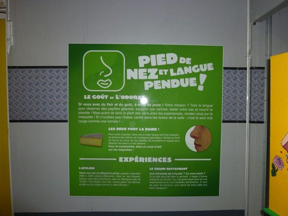 Nous étions dans la salle du gout et de lodorat sur le panneau il y avait écrit les exercices et expériences quil y avait à faire il nous expliquait que notre odorat pouvait se tromper.