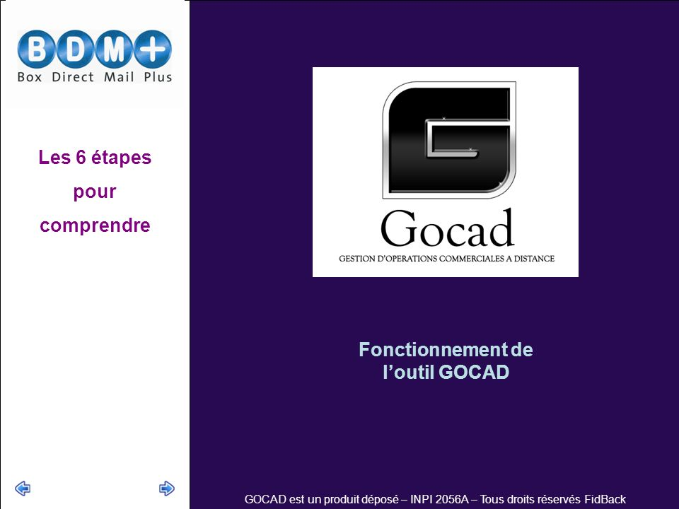 GOCAD est un produit déposé – INPI 2056A – Tous droits réservés FidBack Fonctionnement de loutil GOCAD Les 6 étapes pour comprendre
