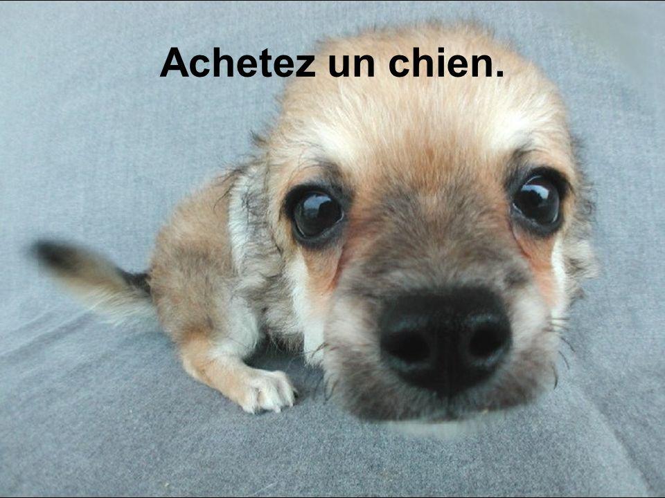 Diaporama PPS réalisé pour http://www.diaporamas-a-la-con.com Achetez un chien.