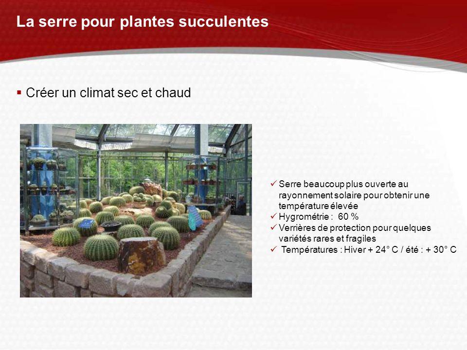 La serre pour plantes succulentes Créer un climat sec et chaud Serre beaucoup plus ouverte au rayonnement solaire pour obtenir une température élevée