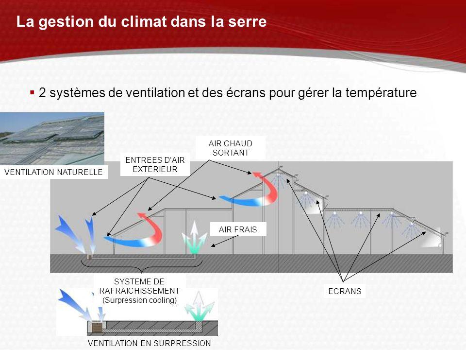 VENTILATION EN SURPRESSION La gestion du climat dans la serre ENTREES DAIR EXTERIEUR SYSTEME DE RAFRAICHISSEMENT (Surpression cooling) AIR CHAUD SORTA