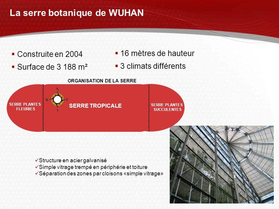 La serre botanique de WUHAN Construite en 2004 Surface de 3 188 m² 16 mètres de hauteur 3 climats différents Structure en acier galvanisé Simple vitra