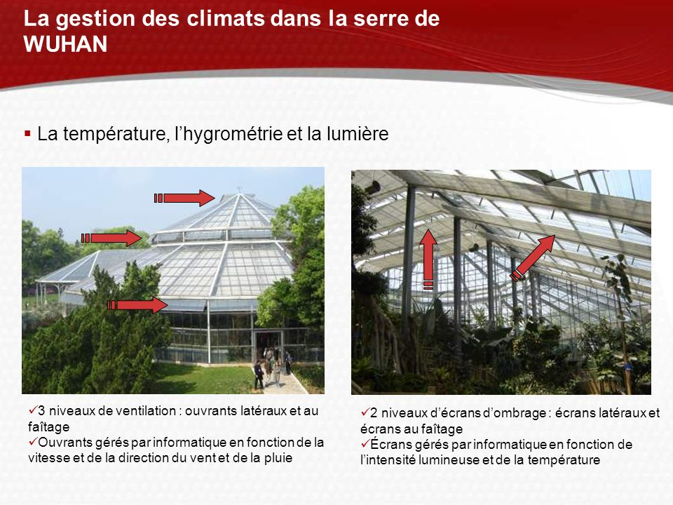 La gestion des climats dans la serre de WUHAN La température, lhygrométrie et la lumière 3 niveaux de ventilation : ouvrants latéraux et au faîtage Ou