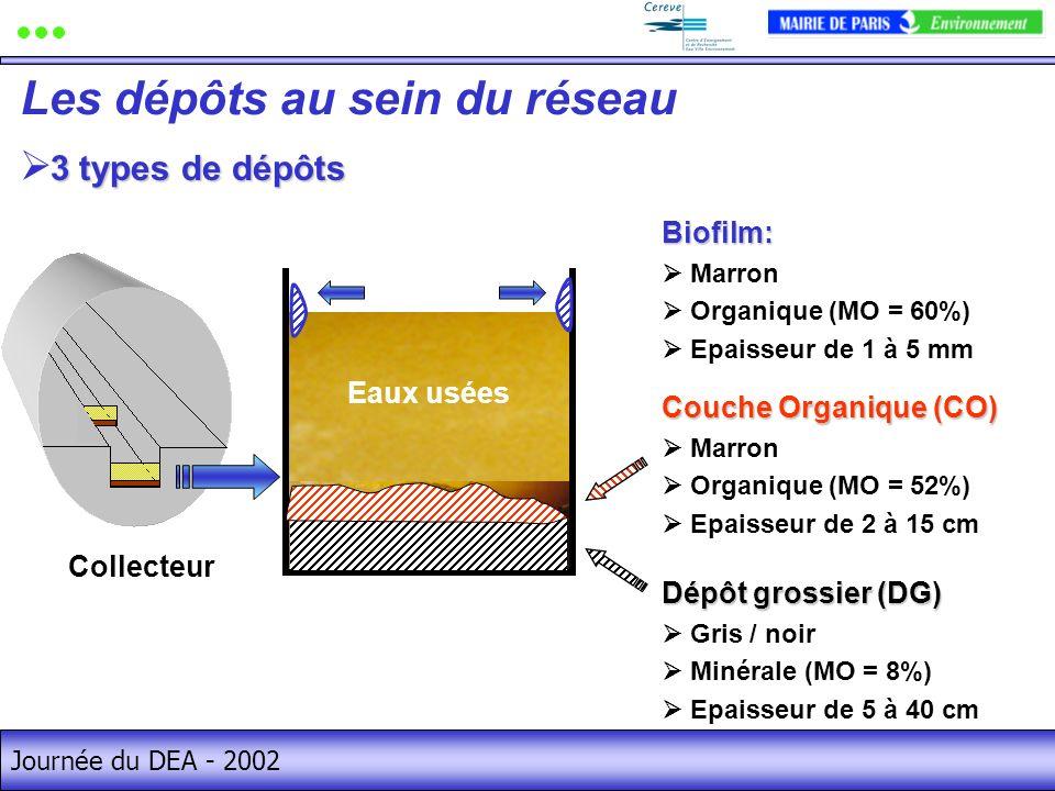 Journée du DEA - 2002 Les dépôts au sein du réseau Dépôt grossier (DG) Gris / noir Minérale (MO = 8%) Epaisseur de 5 à 40 cm Couche Organique (CO) Marron Organique (MO = 52%) Epaisseur de 2 à 15 cmBiofilm: Marron Organique (MO = 60%) Epaisseur de 1 à 5 mm Eaux usées Collecteur 3 types de dépôts