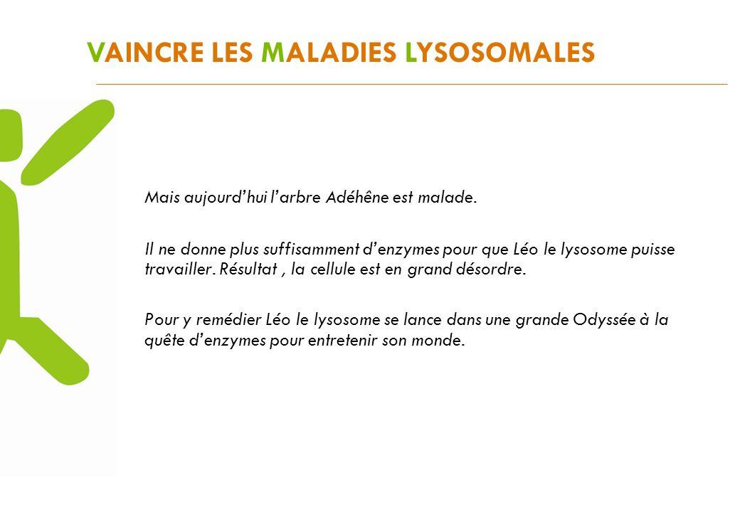 VAINCRE LES MALADIES LYSOSOMALES Mais aujourdhui larbre Adéhêne est malade. Il ne donne plus suffisamment denzymes pour que Léo le lysosome puisse tra