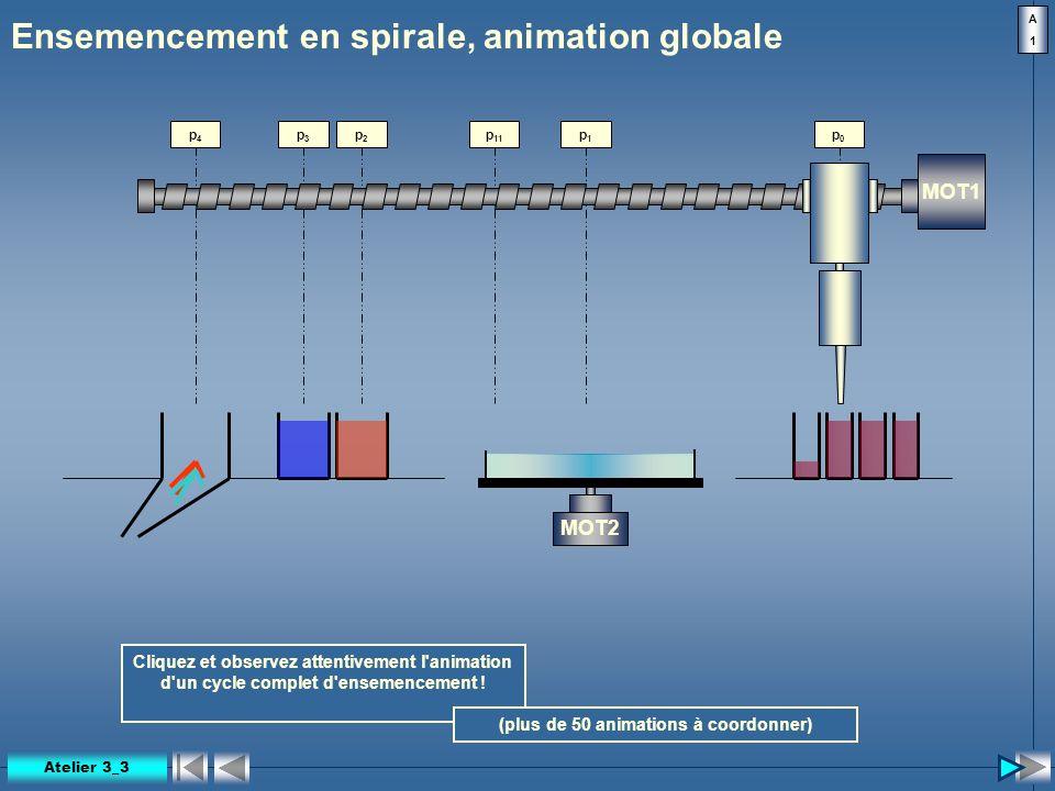 p 11 Ensemencement en spirale, animation globale MOT1 MOT2 p0p0 p1p1 p2p2 p3p3 p4p4 Cliquez et observez attentivement l'animation d'un cycle complet d