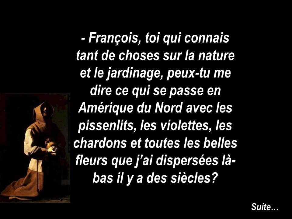 - François, toi qui connais tant de choses sur la nature et le jardinage, peux-tu me dire ce qui se passe en Amérique du Nord avec les pissenlits, les violettes, les chardons et toutes les belles fleurs que jai dispersées là- bas il y a des siècles.