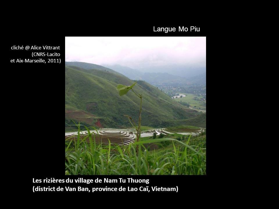 Les rizières du village de Nam Tu Thuong (district de Van Ban, province de Lao Caï, Vietnam) cliché @ Alice Vittrant (CNRS-Lacito et Aix-Marseille, 20