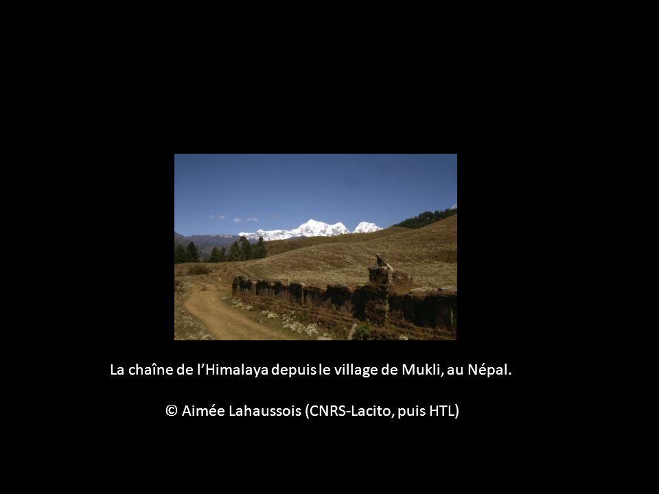 La chaîne de lHimalaya depuis le village de Mukli, au Népal. © Aimée Lahaussois (CNRS-Lacito, puis HTL)
