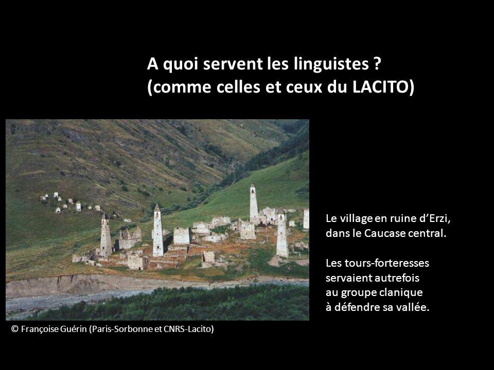 A quoi servent les linguistes ? (comme celles et ceux du LACITO) © Françoise Guérin (Paris-Sorbonne et CNRS-Lacito) Le village en ruine dErzi, dans le