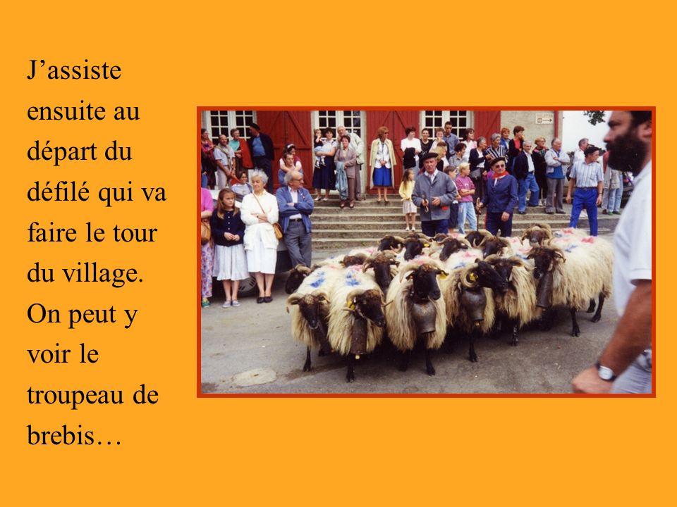 Jassiste ensuite au départ du défilé qui va faire le tour du village. On peut y voir le troupeau de brebis…