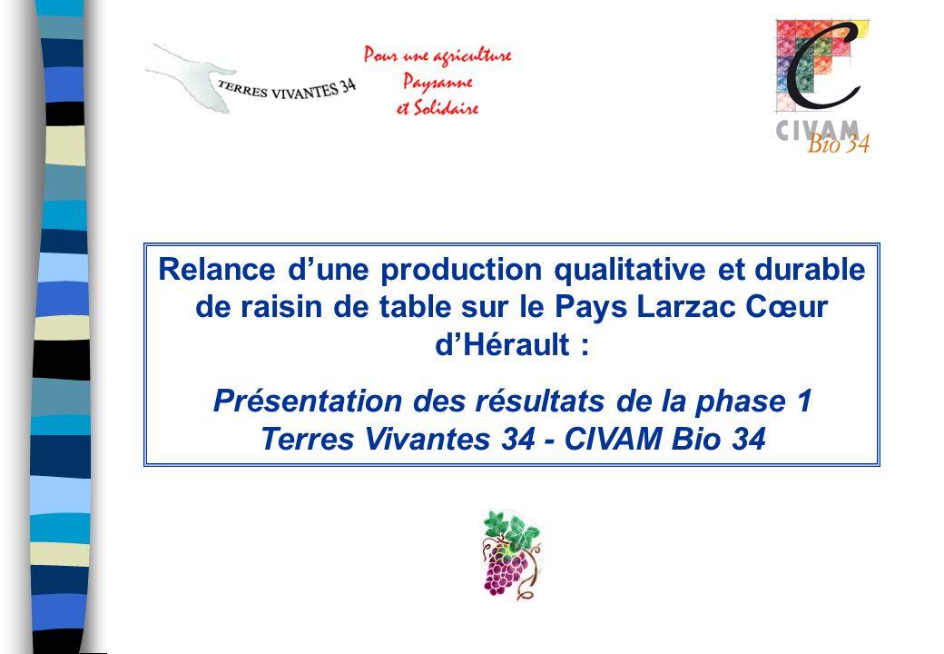 Relance dune production qualitative et durable de raisin de table sur le Pays Larzac Cœur dHérault : Présentation des résultats de la phase 1 Terres V