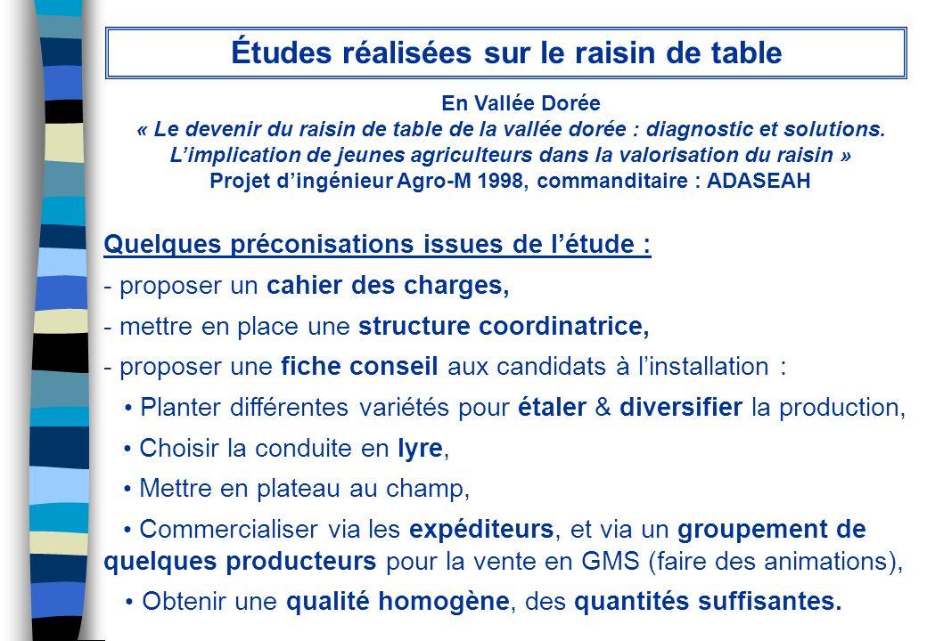En Vallée Dorée « Le devenir du raisin de table de la vallée dorée : diagnostic et solutions. Limplication de jeunes agriculteurs dans la valorisation