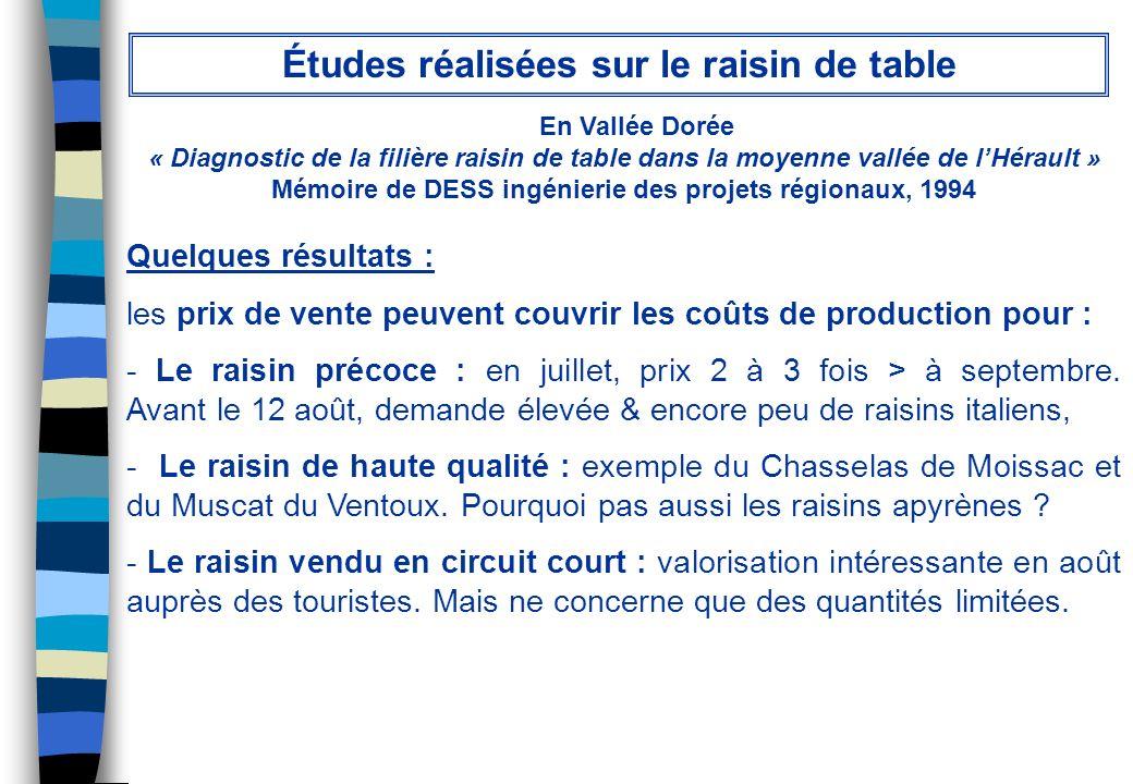 En Vallée Dorée « Diagnostic de la filière raisin de table dans la moyenne vallée de lHérault » Mémoire de DESS ingénierie des projets régionaux, 1994