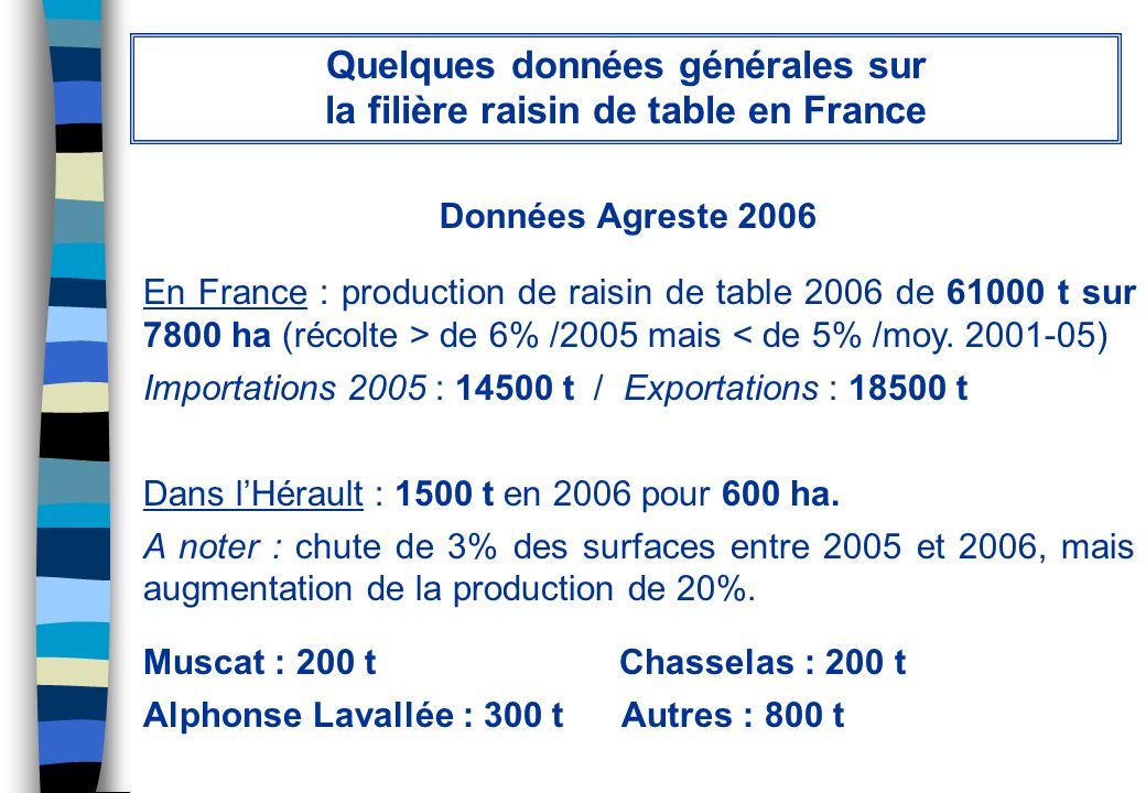 Données Agreste 2006 Quelques données générales sur la filière raisin de table en France En France : production de raisin de table 2006 de 61000 t sur