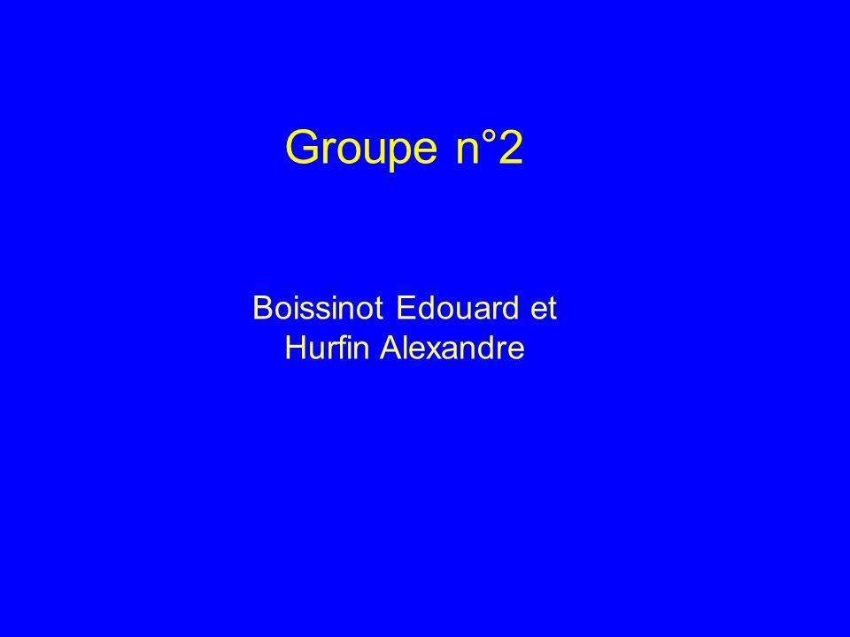 Groupe n°2 Boissinot Edouard et Hurfin Alexandre