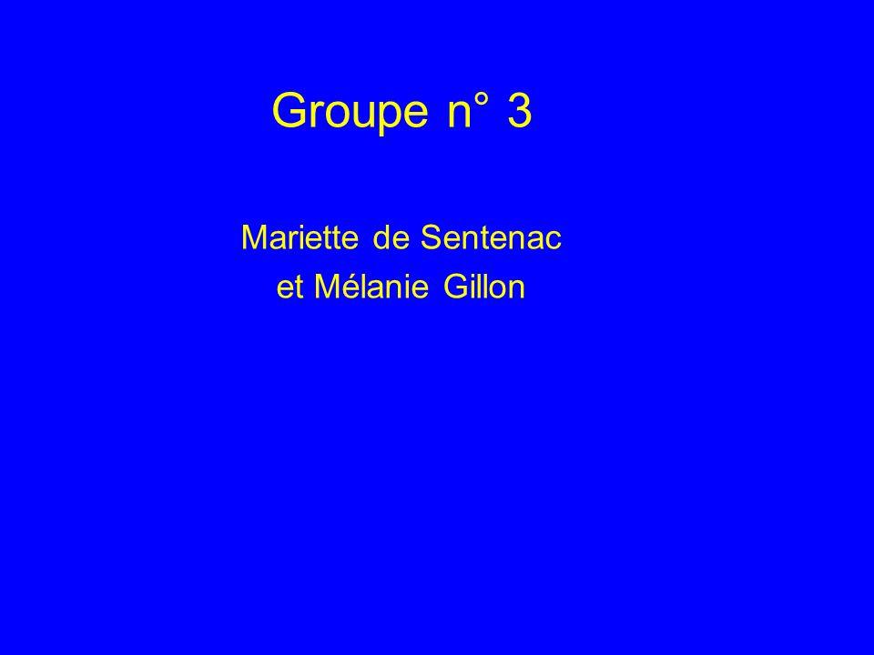 Groupe n° 3 Mariette de Sentenac et Mélanie Gillon