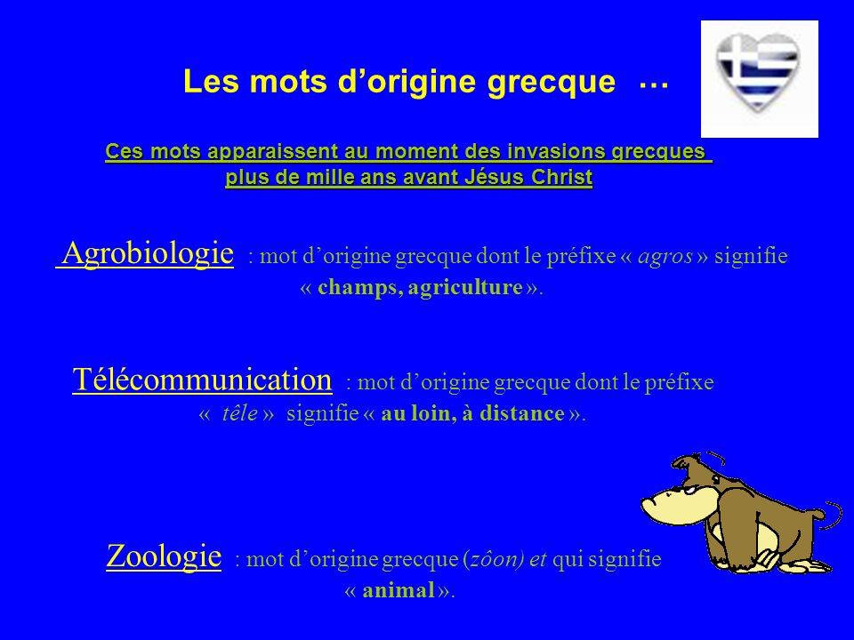 Les mots dorigine grecque Zoologie : mot dorigine grecque (zôon) et qui signifie « animal ».