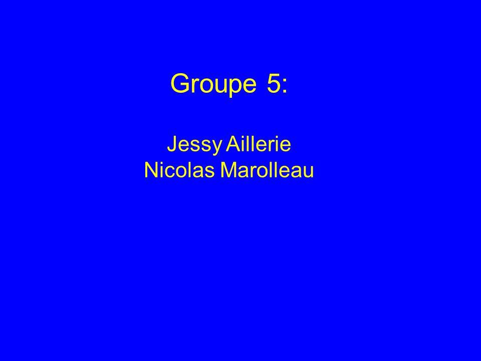 Groupe 5: Jessy Aillerie Nicolas Marolleau