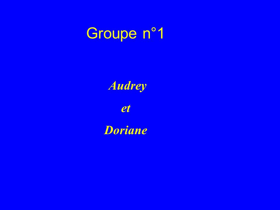 Groupe n°1 Audrey et Doriane