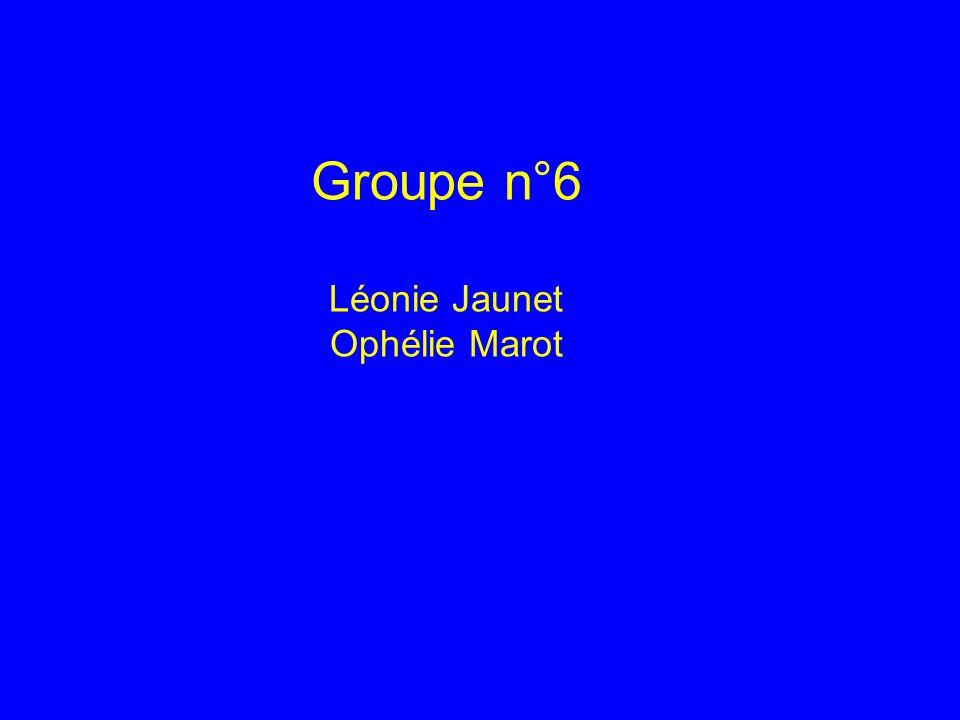 Groupe n°6 Léonie Jaunet Ophélie Marot