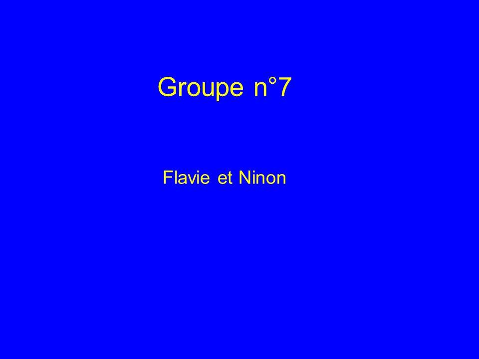 Groupe n°7 Flavie et Ninon