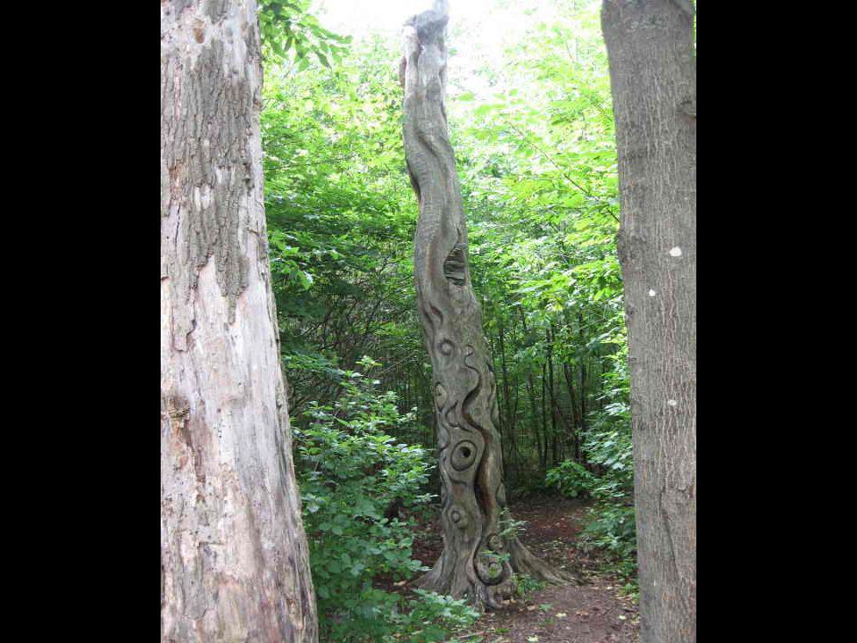 Ces sculptures ont été faites par des artisans avec leur scie à chaîne
