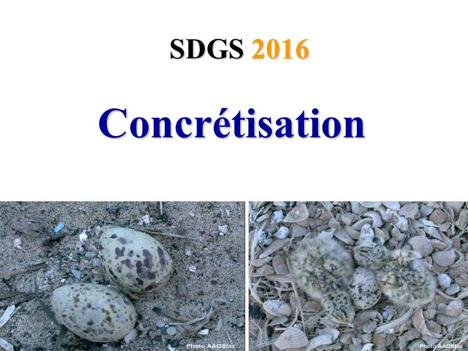 Concrétisation Concrétisation SDGS 2016