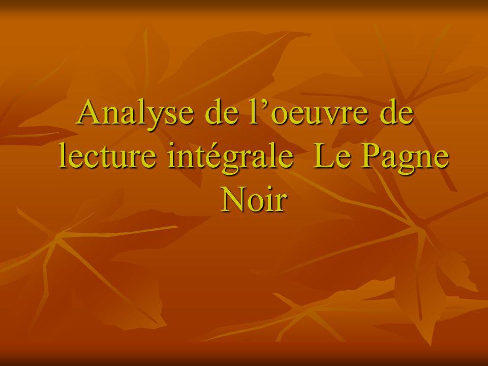 Analyse de loeuvre de lecture intégrale Le Pagne Noir