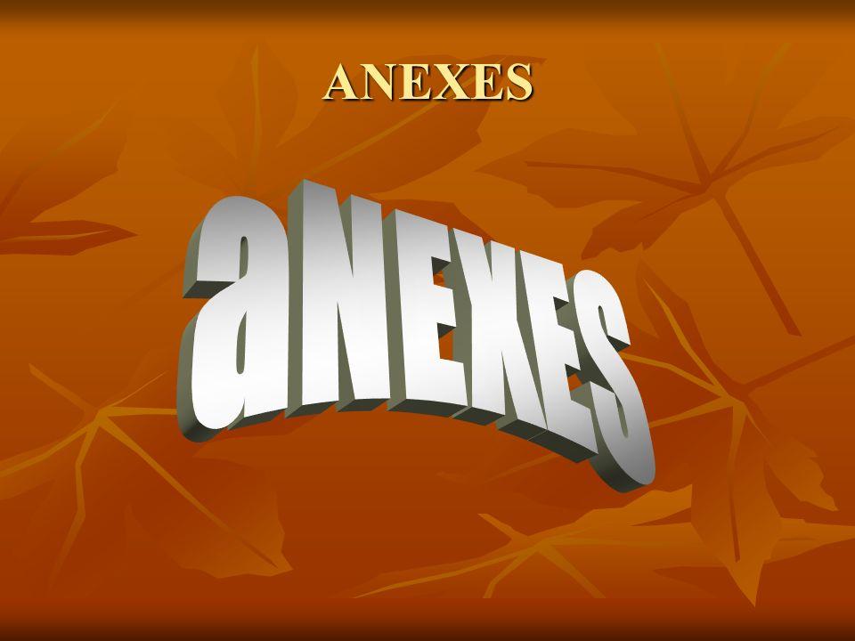 ANEXES