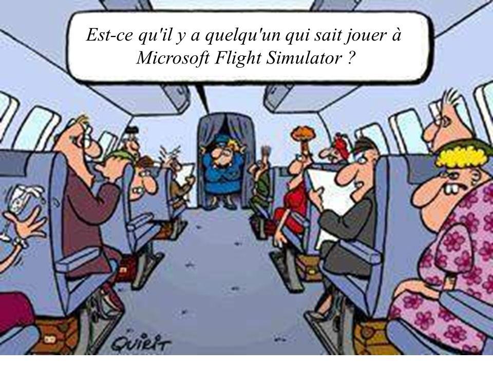 Est-ce qu'il y a quelqu'un qui sait jouer à Microsoft Flight Simulator ?