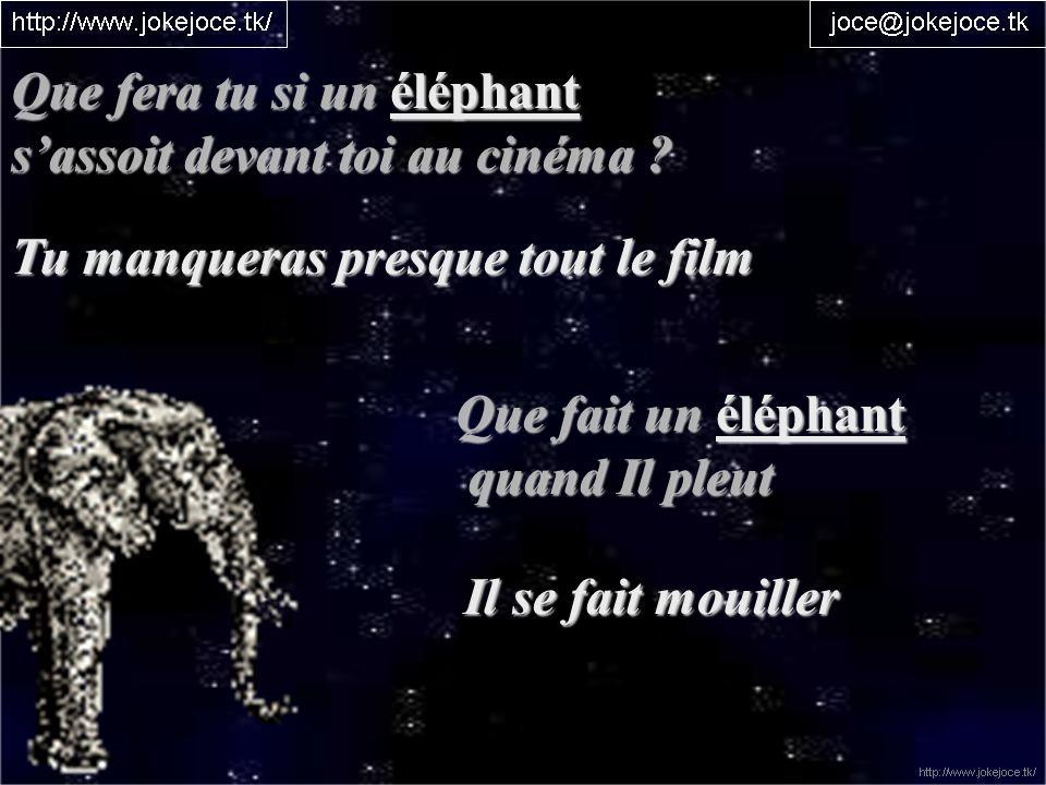 Que fera tu si un éléphant sassoit devant toi au cinéma ? Tu manqueras presque tout le film Que fait un éléphant quand Il pleut quand Il pleut Il se f