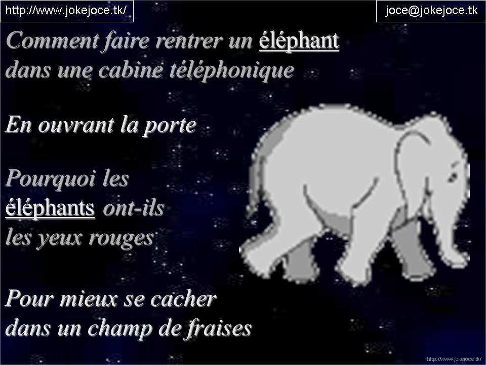Comment faire rentrer un éléphant dans une cabine téléphonique En ouvrant la porte Pourquoi les éléphants ont-ils les yeux rouges Pour mieux se cacher