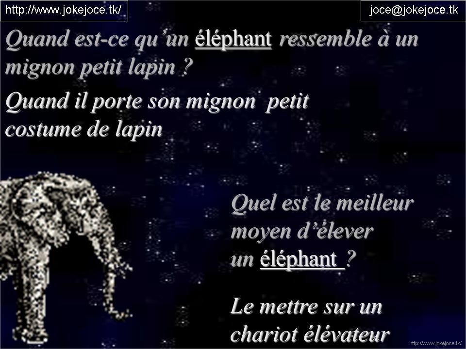 Pourquoi un éléphant est-il gros, gris et tout plissé .