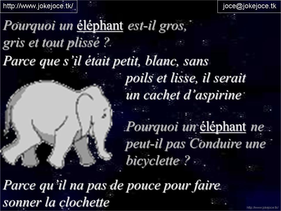 Pourquoi un éléphant est-il gros, gris et tout plissé ? Parce que sil était petit, blanc, sans poils et lisse, il serait poils et lisse, il serait un
