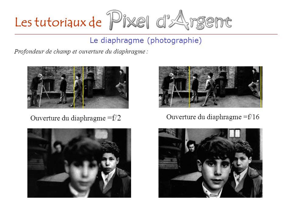 Ouverture du diaphragme =f/2 Le diaphragme (photographie) Les tutoriaux de Profondeur de champ et ouverture du diaphragme : Ouverture du diaphragme =f