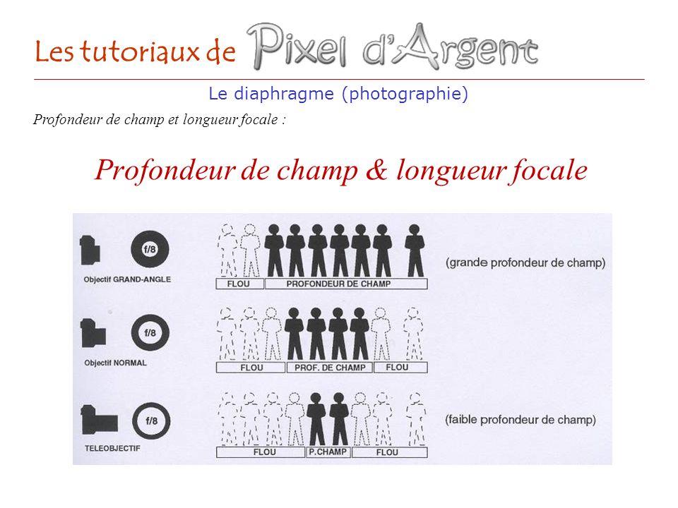 Profondeur de champ & longueur focale Le diaphragme (photographie) Les tutoriaux de Profondeur de champ et longueur focale :