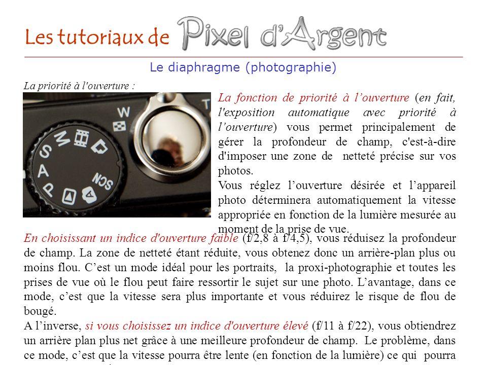Le diaphragme (photographie) Les tutoriaux de La priorité à l'ouverture : En choisissant un indice d'ouverture faible (f/2,8 à f/4,5), vous réduisez l